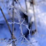 Błękit – krystaliczna przejrzystość